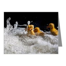 Ducklings swimming Note Cards (Pk of 10)