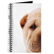 Shar Pei puppy looking at camera, studio s Journal