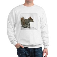 squirrel covered in snowflakes Sweatshirt