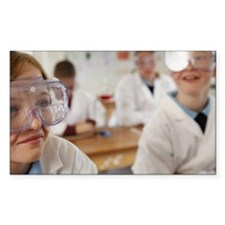 Pupils 9-12 sitting in science Decal