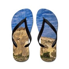 Turkey, Cappadocia, horse and cart belo Flip Flops