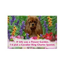 Funny Dog sayings Rectangle Magnet