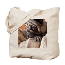 Dog in laundry basket Tote Bag