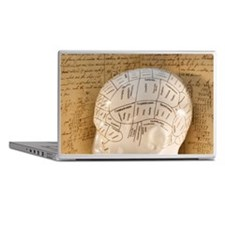 Close up of Phrenology head diagram Laptop Skins