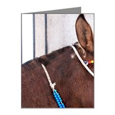 Festooned donkey Note Cards (Pk of 10)
