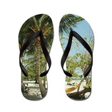 Puerto Rico, Vieques, hammock and palm  Flip Flops
