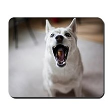 Dog catching food in mouth Mousepad