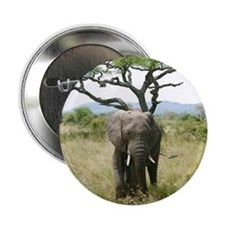"""Elephant roaming around in jungle of  2.25"""" Button"""