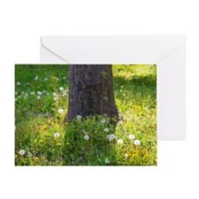 Dandelions around a tree trunk Greeting Card