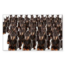 Large group of Dobermans on wh Decal