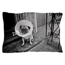 A Pug with a protective cone collar on Pillow Case