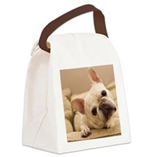 French bulldog. Canvas Lunch Bag