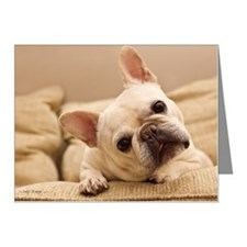 French bulldog. Note Cards (Pk of 20)