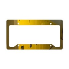 Row of yellow lockers in a ho License Plate Holder