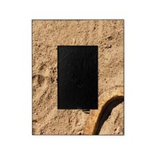 Horseshoes and stake Picture Frame
