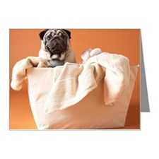 Dog in laundry basket Note Cards (Pk of 20)