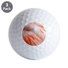 Flamingo at rest Golf Ball