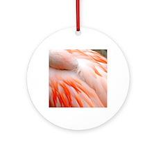 Flamingo at rest Round Ornament