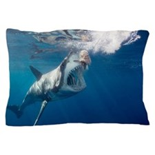 Great white shark arching body and ope Pillow Case