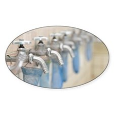 Water taps and soaps Decal
