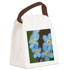 Beautiful blue Forget-me-not Canvas Lunch Bag