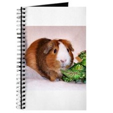 Guinea Pig and Greens Journal