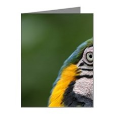 Ecuador, Guayaquil, blue and Note Cards (Pk of 10)