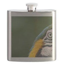 Ecuador, Guayaquil, blue and yellow macaw Flask