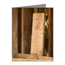 Sparrow on fence Note Cards (Pk of 10)