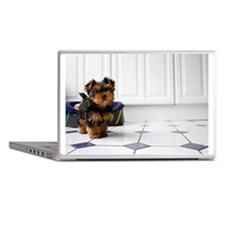 Cute Yorkshire terrier puppy in a kit Laptop Skins