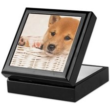 The Shiba Inu is the smallest of the  Keepsake Box