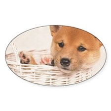The Shiba Inu is the smallest of th Decal