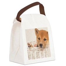 The Shiba Inu is the smallest of  Canvas Lunch Bag