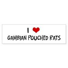 I Love Gambian Pouched Rats Bumper Car Sticker