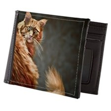 That is the last picture from the stud Mens Wallet