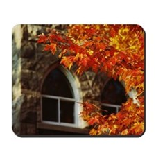 Fall foliage and corner of building Mousepad