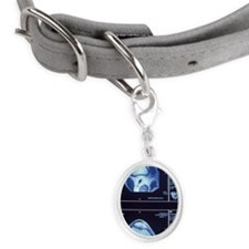 Multiple MRI scans of knee join Small Oval Pet Tag