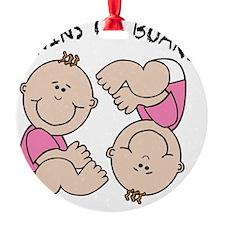 Twin Girls on Board Ornament