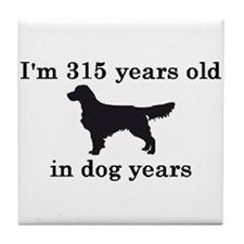 45 birthday dog years golden retriever 2 Tile Coas