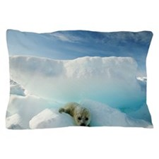 Harp seal Phoca groenlandica on iceber Pillow Case