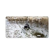 Dog surrounded by sheep Aluminum License Plate