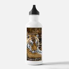 Royal bengal tiger Water Bottle