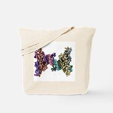 DNA recognition, molecular model Tote Bag