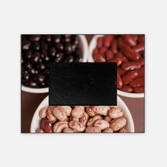 Dried pulses Picture Frame