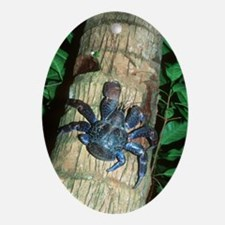 Robber crab Oval Ornament