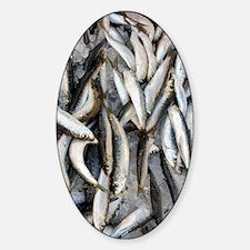 Sardines Decal