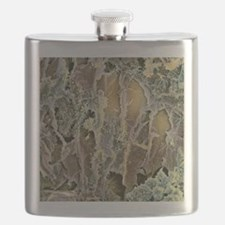 Dried tea, SEM Flask