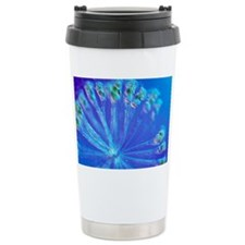 Rotifer colony Travel Mug