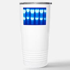 Electrophoresis of RNA Stainless Steel Travel Mug