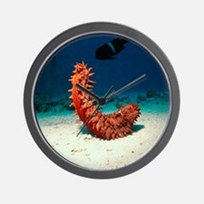 Sea cucumber Wall Clock